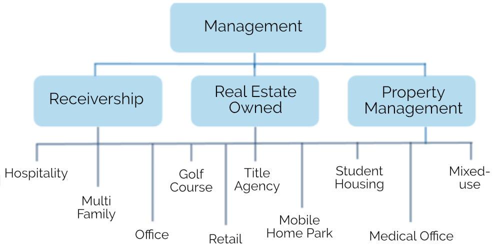 Advisory & Management